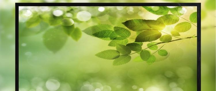 Green IT: Neues Beratungstool für Verwaltungen online