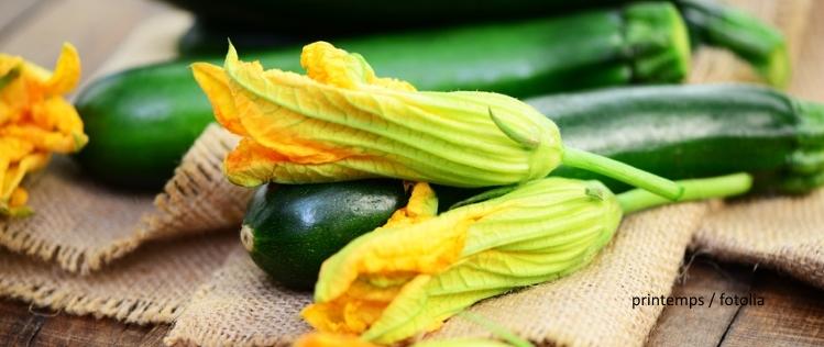 EcoTopTen Saisonrezept Juli: Zucchini